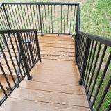 Barandilla de acero modificada para requisitos particulares de la escalera de la fabricación de la fábrica