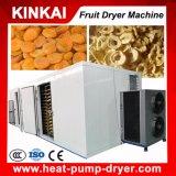 Fabricante profissional da máquina do secador da fruta