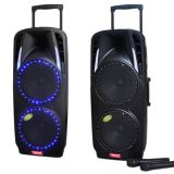 Feiyang/Temeisheng conjuguent haut-parleur actif de Bluetooth de grand pouvoir d'usager de 10 pouces avec le chariot--F73D
