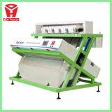 Machine stable et fiable de trieuse de couleur de graines de cumin