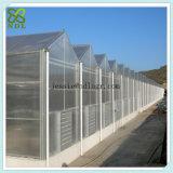Casa verde de bombas de água para a produção vegetal