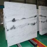 Mármol rayado blanco del mármol de la panda hermosa, blanco y negro, mármol blanco cristalino