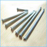 Flacher runder Kopf galvanisierter Stahlbeton-Nagel