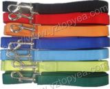 Laisse en nylon de toc, fil de sortie d'animal familier (YD039-2)