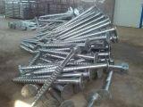Горячие гальванизированные спиральн кучи, винт складывают обслуживание заварки стальной трубы