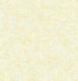 De tulp Polishde verglaasde Ceramiektegels voor Vloer & Muur 600*600 800*800