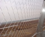 Stainelssの鋼線ロープの金属のネット