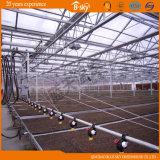 Type hollandais Chambre verte de Venlo de feuille de polycarbonate de technologie