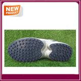 Il nuovo sport del grillo di disegno calza all'ingrosso