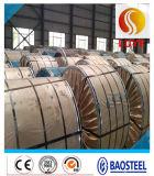 Piatto d'acciaio spesso laminato a caldo dello strato dell'acciaio inossidabile 304