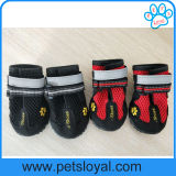 As sapatas respiráveis do engranzamento do animal de estimação para o cão impermeável carreg o Velcro reflexivo