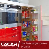 Armadio da cucina di plastica rosso del PVC di assorbimento della foglia di acero rossa (CA09-01)