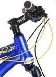 Bicicletta superiore della montagna dal migliore prezzo