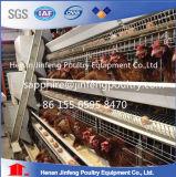 Cage de batterie de poulet de couche de matériel d'agriculture de volaille de l'Ouganda