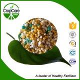 La compensación basó el fertilizante 16-16-16 de NPK para las legumbres de frutas de los cultivos comerciales