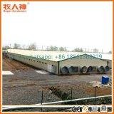 Конструкция сарая фермы цыпленка конструкции профессии с оборудованием снабжения жилищем