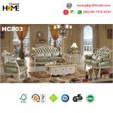 Sofà domestico europeo del cuoio 1+2+3 della mobilia impostato (HC803)