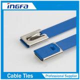 Freies Beispielselbstsichernde Edelstahl-Kabelbinder mit Beschichtung 7.9X800mm