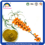 Hot Sale instantâneo Seabuckthorn Juice Powder