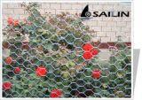 Sailin galvanizó y alambre de pollo revestido del PVC para el acoplamiento del jardín
