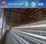 低価格の農業機械の層の鶏の鋼鉄容器および高出力