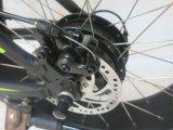 """脂肪質のタイヤ20の""""電気バイクの電気自転車Ebike (TDN01F)"""