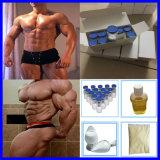 Polvo esteroide del péptido del crecimiento del ser humano del análisis 99.9%