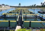 Jaula de los pescados del HDPE