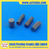 Nitruro di silicio lavorante di precisione Ceramic/Si3n4 Rohi/aste cilindriche