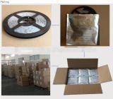 2017년 세륨 RoHS 증명서 크리스마스 훈장 방수 번쩍이는 Cutable SMD5050 3528 30LED/M 유연한 RGB LED 지구 디지털 SMD5050 30LEDs/Meter