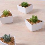 Keramisches Tischplattendreieck kombinierter Flowerpot