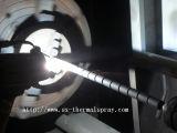 Machine d'enduit professionnelle de poudre de Chine