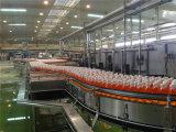 Het Apparaat van de Productie van het appelsap/van het Druivesap
