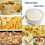 laminatoio della farina di frumento 50t/24h
