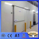 El panel de emparedado de la fibra de vidrio EPS/tarjeta, pared y suelo compuestos