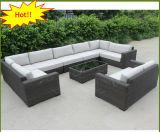 Sofa en osier résistant CF1418 de meubles extérieurs de jardin de l'eau