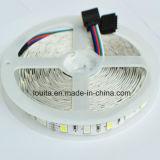 300 LEDs 비 방수 SMD5050 RGBW LED 지구