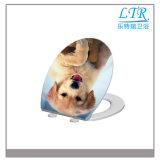 Fujian-umweltfreundlicher materieller westlicher Art-Arbeitskarte-Toiletten-Sitzdeckel für alte Toiletten