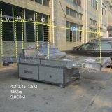 TM-UV1000L UVlichtquelle, die Gerät für Plastik aushärtet
