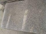 Het Witte G623 Natuurlijke Graniet van de sesam voor de Stap van Treden