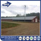 Projetos das casas de galinha para o edifício de exploração agrícola da galinha