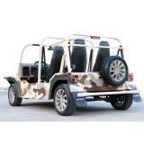 كهربائيّة صحراء تمويه سائحة عربة زار معلما سياحيّا سيارة