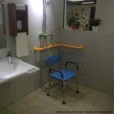 Barre d'encavateur en nylon fixée au mur de douche d'handicap de sûreté stable