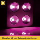 Heißer verkaufender energiesparender 800W PFEILER LED wachsen Licht