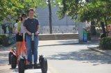 2 rueda de equilibrio E-Scooter Chariot Bike
