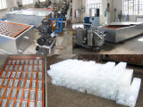 500 Kilogramm-Eis-Block, der Maschine herstellt