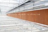 Honig-Kamm-Zellulose-Verdampfungswasserkühlung-Auflage-Gewächshaus-Luftkühlung-Auflage