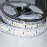 Cinta de 5050 LED, tubo impermeable, los 60LED/M