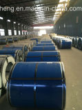 Высокое качество PPGI & PPGL поставкы Prepainted стальная катушка