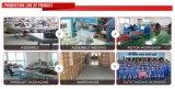 De auto Brandstofinjectors van de Benzine van Siemens van Delen Nieuwe voor de Auto's van Lada Rusland
